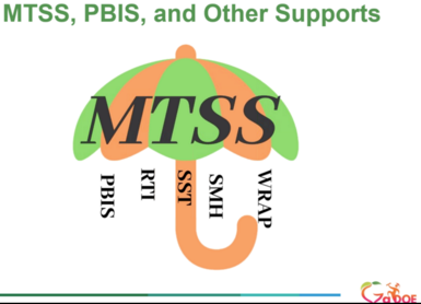 MTSS, PBIS, and Other Supports Graphic